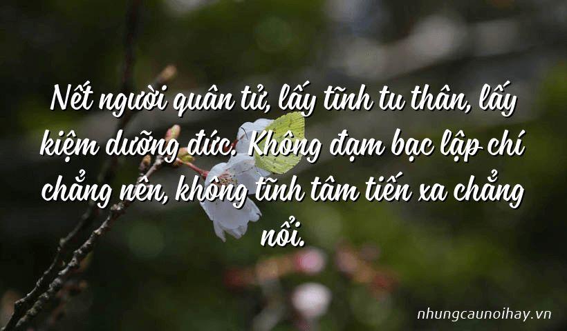 tong hop nhung cau noi hay cua gia cat luong noi tieng nhat 1 - Tổng hợp những câu nói hay của Gia Cát Lượng nổi tiếng nhất