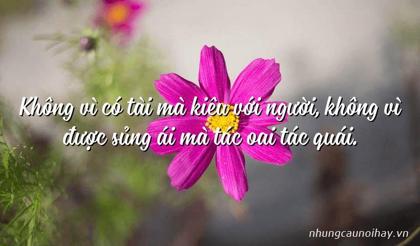 tong hop nhung cau noi hay cua gia cat luong noi tieng nhat 11 - Tổng hợp những câu nói hay của Gia Cát Lượng nổi tiếng nhất
